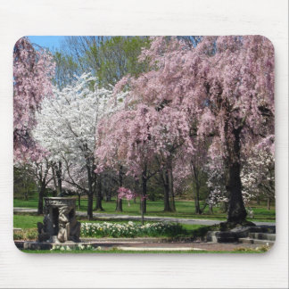 Cherry Blossoms in Philadelphia Mousepad