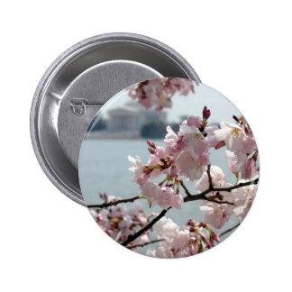 Cherry Blossoms in Washington DC 6 Cm Round Badge