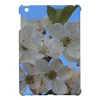 Cherry Blossoms iPad Mini Covers