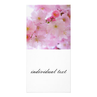 Cherry Blossoms,japanese Personalized Photo Card