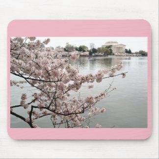 Cherry Blossoms - Jefferson Memorial Mouse Pad