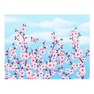 Cherry Blossoms Landscape Postcard