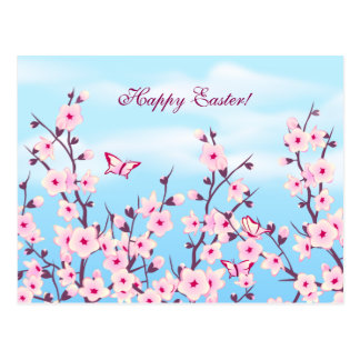 Cherry Blossoms Landscape Postcard