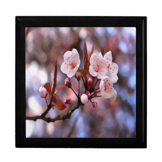 Cherry Blossoms Large Square Gift Box