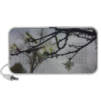 Cherry Blossoms Notebook Speakers