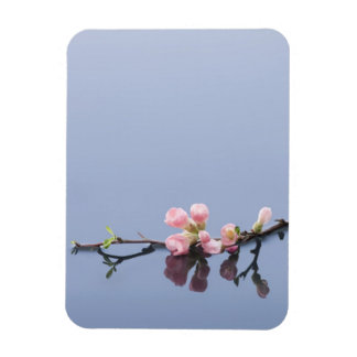 Cherry blossoms on water flexible magnets