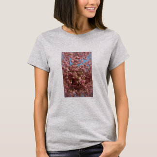 Cherry Blossoms Photo on Ladies' Tee Shirt