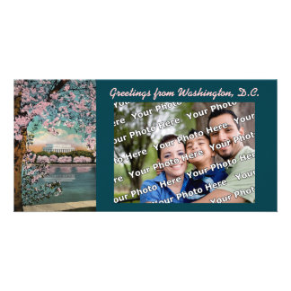 Cherry Blossoms Photocard Photo Card Template