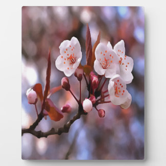 Cherry Blossoms Plaque
