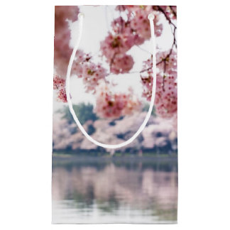 Cherry Blossoms Small Gift Bag