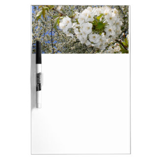Cherry Blossoms, Spring Dry Erase Board