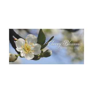 Cherry Blossoms Spring flowers Canvas