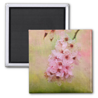 Cherry Blossoms Square Magnet