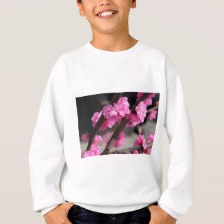 Cherry Blossoms Tee Shirts