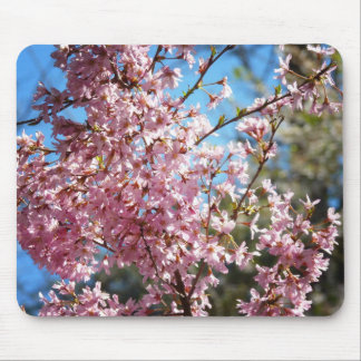 Cherry Blossoms Together On Branches Mouse Pad