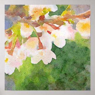 Cherry Blossoms Watercolor Sakura Flowers Spring Poster