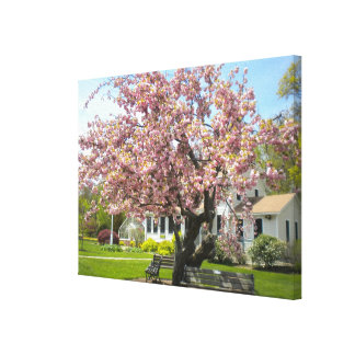 Cherry Blossoms Wrapped Canvas Stretched Canvas Print