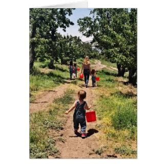 Cherry Picking Time Greeting Card