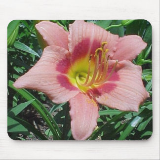 Cherry Smash Daylily Mouse Pad