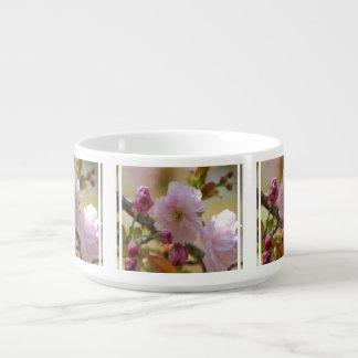 cherry-tree-11.jpg small soup mug