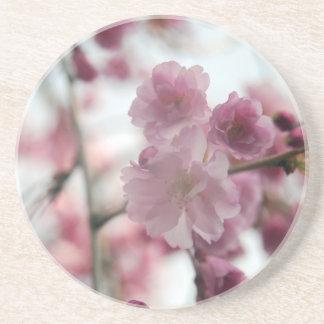 Cherry Tree Blossoms Coaster