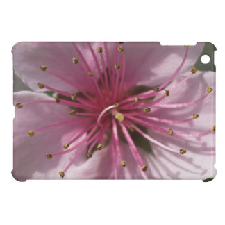 Cherry Tree Blossoms Case For The iPad Mini