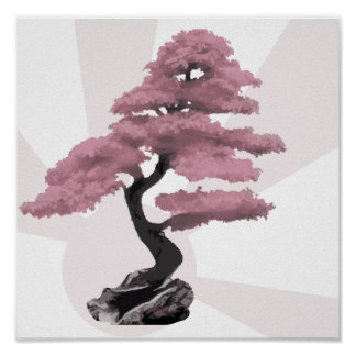 Cherry Tree Bonsai Poster