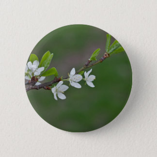 Cherry tree flowers 6 cm round badge
