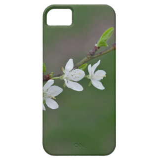Cherry tree flowers case for the iPhone 5