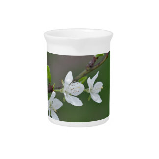 Cherry tree flowers pitcher