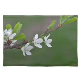 Cherry tree flowers placemat