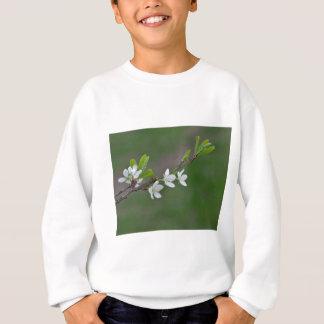 Cherry tree flowers sweatshirt
