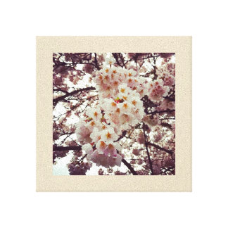 Cherry Tree in Bloom Canvas Print
