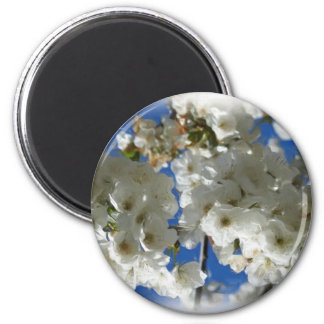 Cherry tree in blossom painting 6 cm round magnet