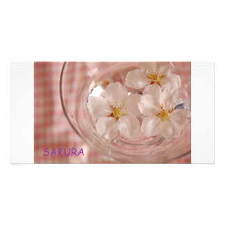 Cherry tree SAKURA Photo Card