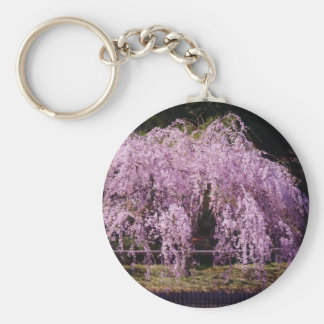Cherry Tree With Cherry Blossoms In Full Bloom Basic Round Button Key Ring