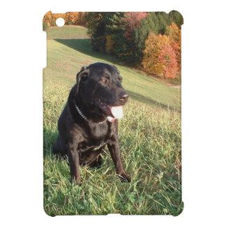 Chert Dog iPad Mini Case
