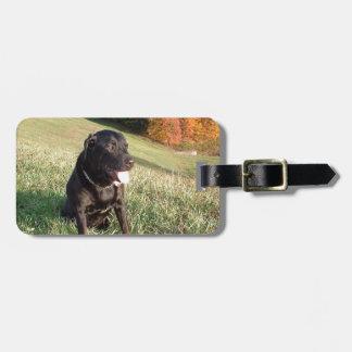 Chert Dog Luggage Tag