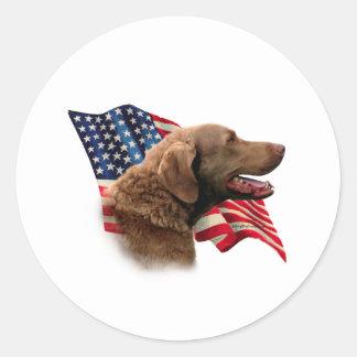 Chesapeake Bay Retriever Flag Classic Round Sticker