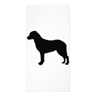 Chesapeake Bay Retriever hunting dog Silhouette Custom Photo Card