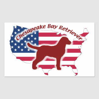 Chesapeake Bay Retriever Rectangular Sticker