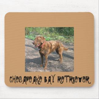 Chesapeakebay retriever mouse pad