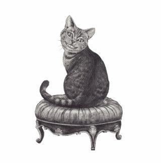 Cheshire Cat Photo Sculpture Alice in Wonderland