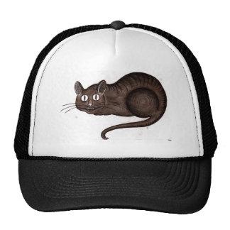 Chesire Cat Trucker Hat