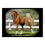 Chestnut Arabian Horse Running Greeting Cards