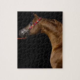 Chestnut Arabian Jigsaw Puzzle