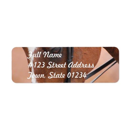 Chestnut Equine  Mailing Label Return Address Label