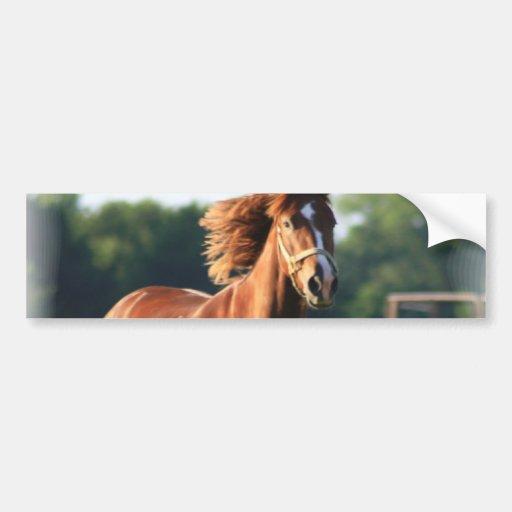 Chestnut Galloping Horse Bumper Sticker