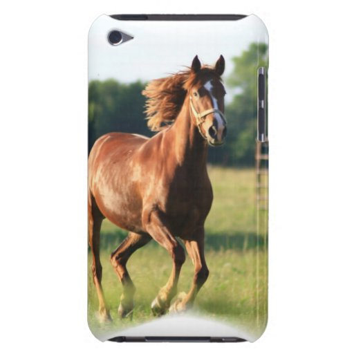 Chestnut Galloping Horse iTouch Case iPod Touch Case