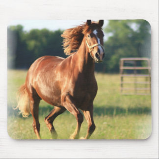 Chestnut Galloping Horse Mouse Pad